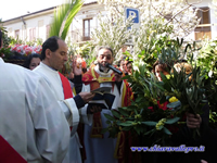 DOMENICA DELLE PALME 2012'