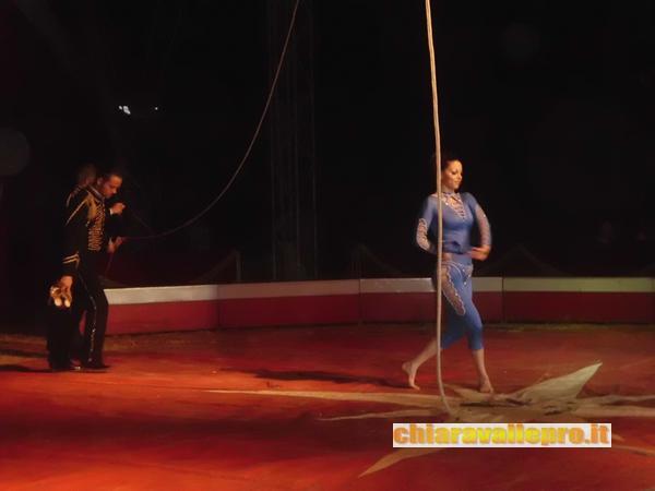 circo (20)