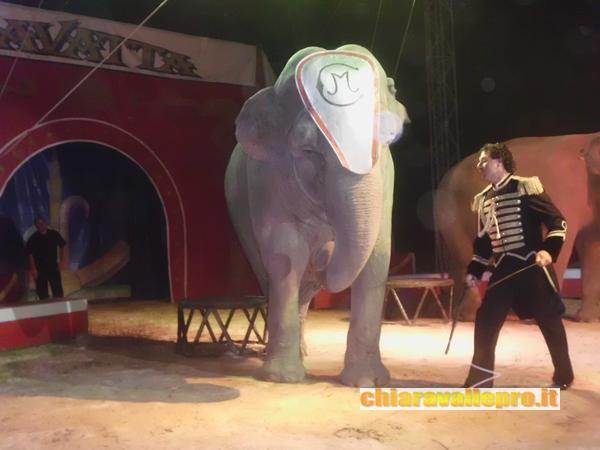 circo (23)