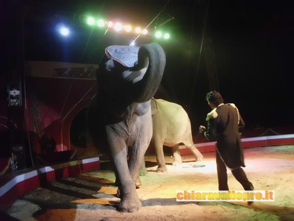 circo (27)