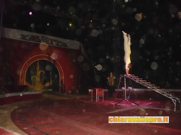 circo (29)