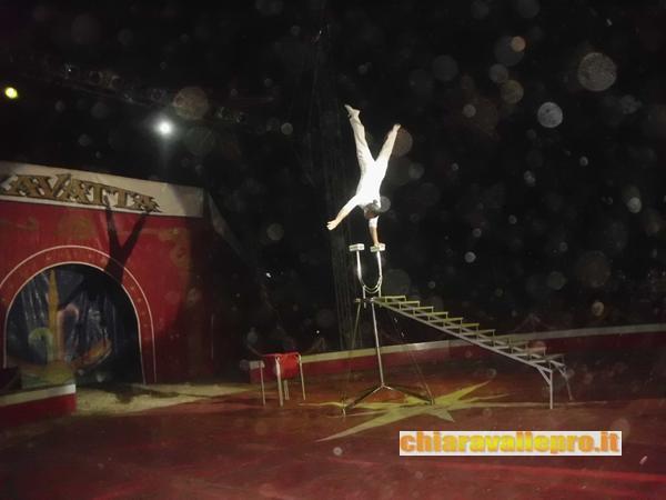 circo (31)