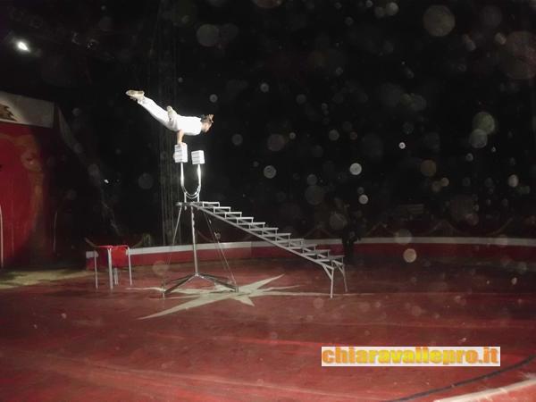 circo (33)