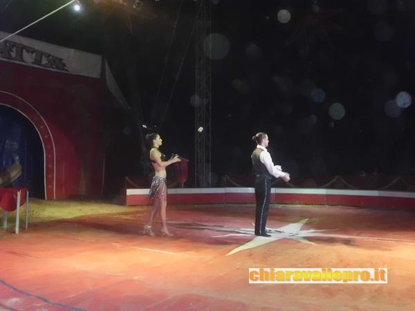 circo (6)