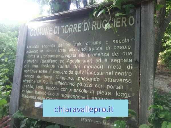 torrer (8)